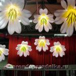 надувные декорации, цветы, оформление сцены, шарики
