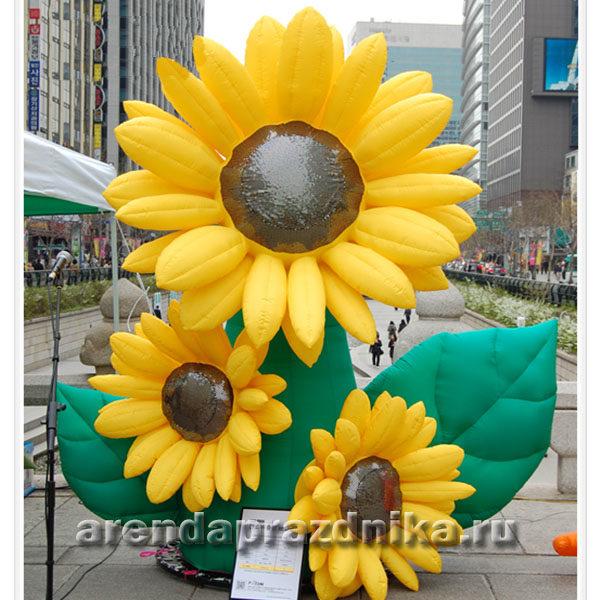 надувные декорации, надувные цветы, подсолнух, городской праздник, уличные декорации